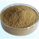 SEA BUCKTHORN EXTRACT,Sea Buckthorn Extract Manufacturer,Sea Buckthorn Extract Supplier