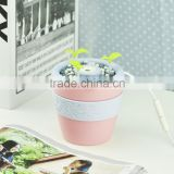 New Car Anion vase of flowers humidifier USB mini air purifier availabe for planting flowers Aroma Diffuser Mist Maker