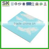Blue sky hot stamping 595x595 pvc ceiling and wall panel
