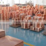 Factory ! copper alloy strip