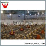 Modern machine Automatic poultry feeding system