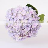 Single Stem Hydrangea Flowers Export Fresh Cut Hydrangea Banquets For Wedding Decoration