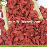 Factory Supply Dried Ningxia Goji Berries