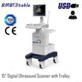 15 inch Digital Ultrasound Scanner with Trolley
