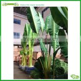 Artificial PU material banana tree