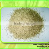 Export quality sesame seeds from Vietnam, high quality from Thongtan