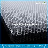 Pc6.0 Honeycomb Panel Available Transparent And In Colors  Apply Into Energy Absorbing Structures