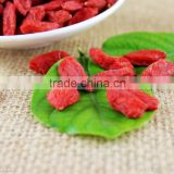 Lycium Chinese Miller Berry/China Natural Goqi Berry/Bulk goji berries for sale The best sweet dried goqi wolfberry ningxia goji