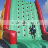 Matterhorn inflatable climbing wall for sale