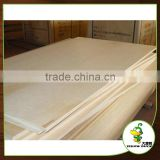 Plastic birch plywood 18mm with CE certificate