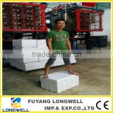 New Styrofoam Polystyrene Boxes Making Machine