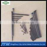 (17 years factory)Common nail iron nail,bright polished common nail,common round wire nails
