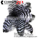 Leading Supplier CHINAZP Factory Exporting Bulk Sale Colored Silver and Black Large Striped Ostrich Feathers for Sale
