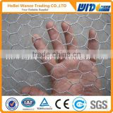 Good quality best price galvanized poultry wire mesh / poultry wire mesh by TUV Rheinland (factory)