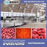 New Design green soy bean processing line