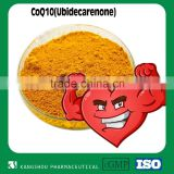 High quality health supplement Natural coenzyme q10 buk Powder co enzyme q10