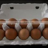 Pulp Moulding Process Type Size 10 Holes and Accept Custom Order egg trays