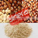 Turkish Hazelnut Nut Roasted Nut Shelled Nut Hazelnut Kernels Minced Hazelnut Fresh Hazelnut Dried Hazelnut