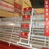 best price automatic egg collection A type hot galvanized & electric galvanzied chicken layer cage price chicken cage