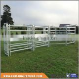 Australia hot dipped galvanized horse fence In Farm ( Factory Trade Assurance)
