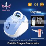 CE Certificated Portable Oxygen Making Machine Oxygen Concentrator 90% Purity Oxygen Machine for Health