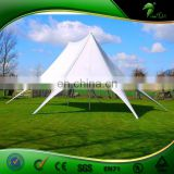 China marquee tents,double star tent with two peaks,high peak canopy tent for wedding
