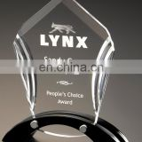 Unique and customized acrylic awards trophy
