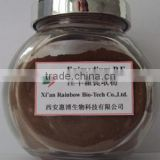 top quality of icariin horny goat weed epimedium