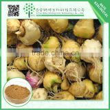 2015 best effective organic maca root extract powder 10:1 natural in bulk