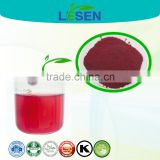 Organic Dried red beet root Juice powder