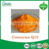 Antioxidant Supplement Halal Coenzyme Q10 In Bulk