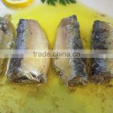 ingredient canned sardine fish(WW-125)