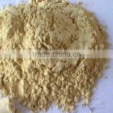 Super Ginger Root Extract powder CAS No: 84696-15-1 at favorable price, welcome inquires