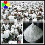 Professional Supplier CAS NO.24307-26-4 98%TC 8%SP 25%AS 25%SL Mepiquat Chloride in Plant Growth Regulator