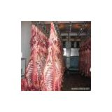 Sell Chilled or Frozen Halal Beef Meat