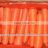 2014 new chinese fresh carrot