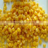 Frozen sweet corn kenerl