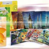 Lenticular 3D PP plastic file folder, PP Lenticular A4 file folder,for gifts and promotion