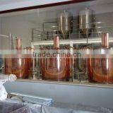Fermenting System - Beer Equipment/Draft Beer Brewering/Brewery
