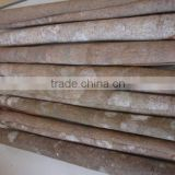 VIETNAM TUBE CASSIA/TUBE CINNAMON/ Pressed Cassia best price(Viber/Whatsaap:+84965152844)