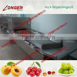 High quality fruit/green plum pit removal machine