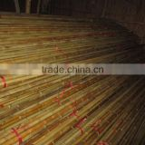 Vietnam Bamboo pole for garden plant