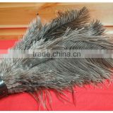 China manufactury OEM high quality hot sale ostrich feather clean duster