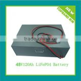 48V Lithium Iron Phosphate Battery