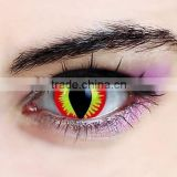 cheap free halloween cat eye color contacts