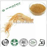 GMP hot sale pharmaceutical grade panax ginseng extract powder