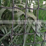 HDPE strong plastic fencing net/Garden fencing net/Tree guards net factory
