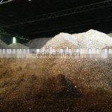 Inquiry about  Eucalyptus Wood Chips