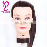 Alibaba China Wholesale Cheap Chinese Remy Human Hair Trainning Head