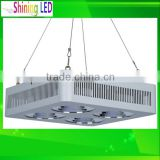 12W - 1000W 120W 180W LED Plant Grow Light Apollo or Par Light Par30 Par38 E27 Base